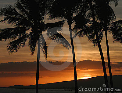 Orange Color Hawaiian Sunset in Honolulu Hawaii