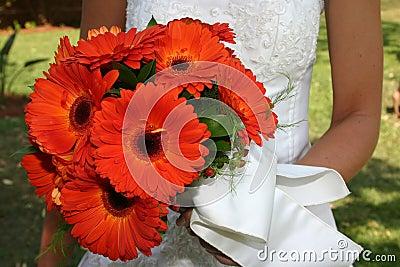 Orange daisies 2