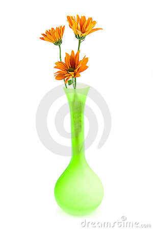Orange daisy flowers in green vase