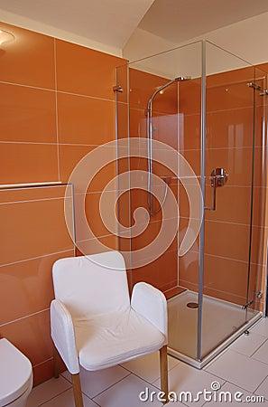 Orange Designer Bathroom