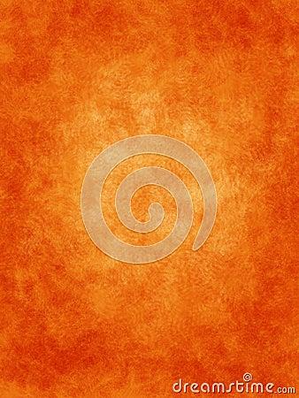 Orange with ferns background