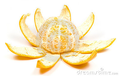 Orange - flower
