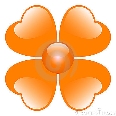 Orange flower illustration