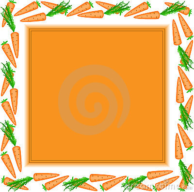 Orange frame of carrots