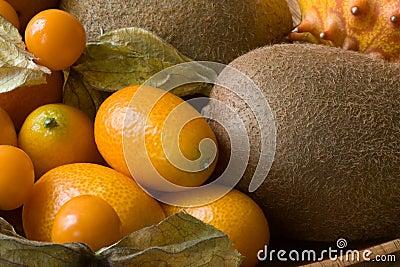 Orange fruits compostion