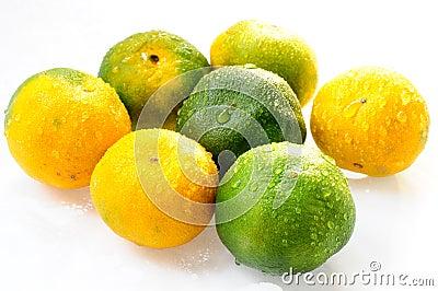 Orange frukter