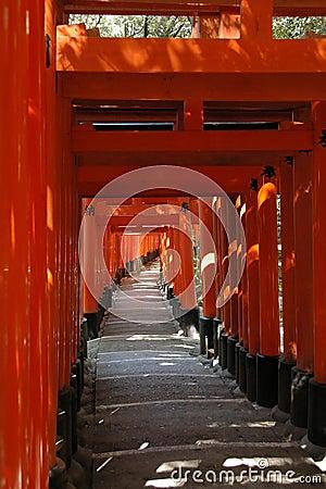 Orange gates