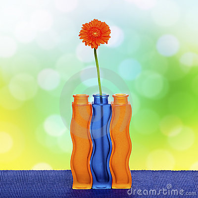 Orange gerbera flower in vase