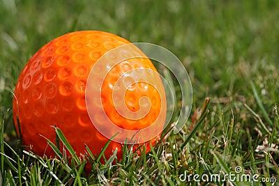 Orange golf ball on the grass