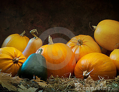 Orange gourd lying on dark background