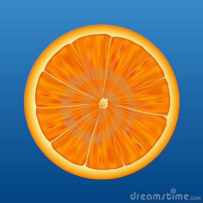 Orange half - vector
