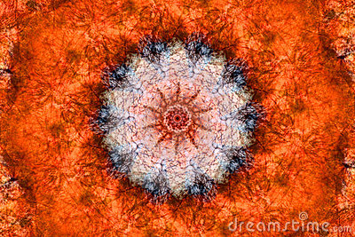 Orange Kaleidoscope