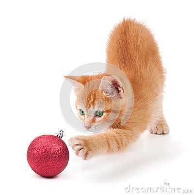 Orange Kitten Playing with a Christmas Ornament