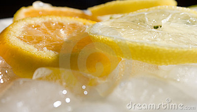 Orange lemons and ice cubes
