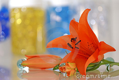 Orange lily with a remedy for aroma therapy
