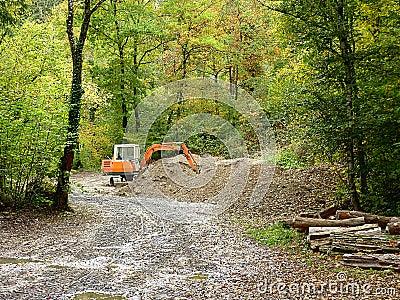 Orange mechanical digger in forest