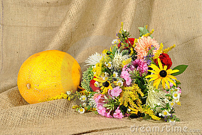 The orange melon and autumn flowers against rough