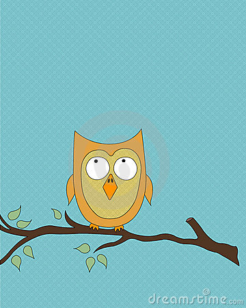 Orange owl on tree branch
