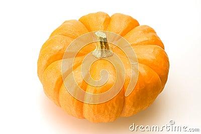 Orange Pumkin