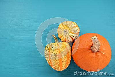 Orange pumpkin and boldly patterned squash on painted background Stock Photo