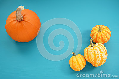 Orange pumpkin and yellow squash on teal painted wood Stock Photo