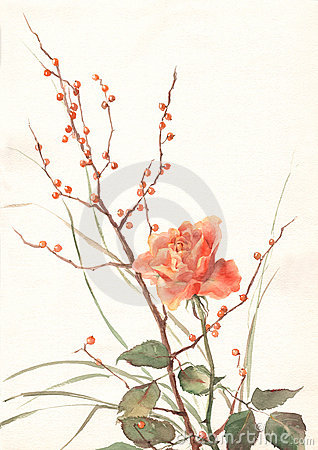 Free Orange Rose Watercolor Painting Stock Images - 4690994