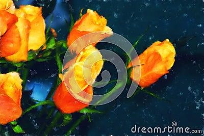 Orange Roses Fine Art