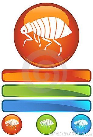 Orange Round Icon - Flea