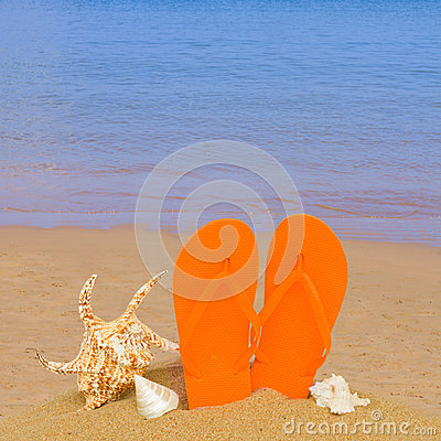 Free Orange Sandals And Seashells In Sand On Beach Stock Photography - 31912472