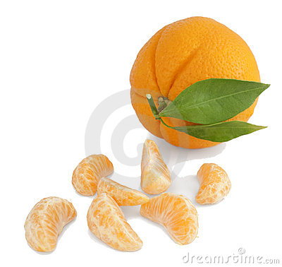 Orange and segments.