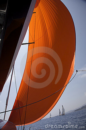 Free Orange Spinnaker In The Wind Stock Images - 13005554
