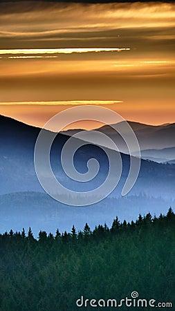 Free Orange Sunrise. Before It Finally Arises, It Shines Briefly In Orange. Royalty Free Stock Photo - 131077995