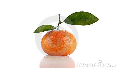 Orange or tangerine isolated on white