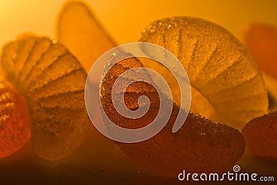 Orange tasty and sweet fruit jellies