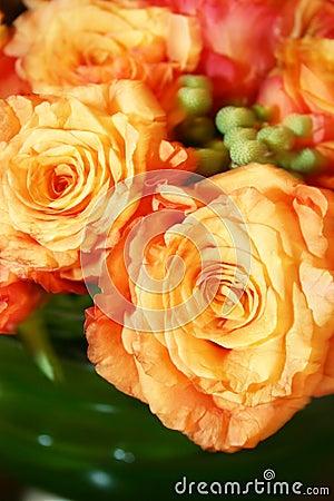 Orange thai roses 013