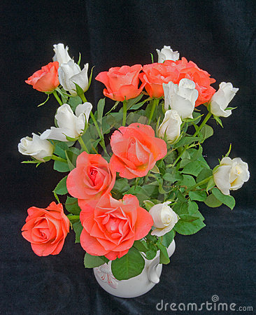 Orange and white roses.