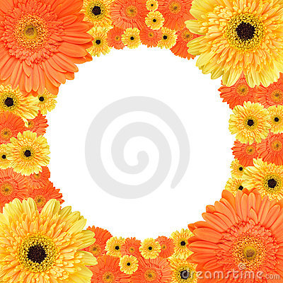 Orange and yellow daisy circular frame