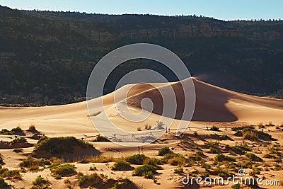 The orange yellow sandy dune
