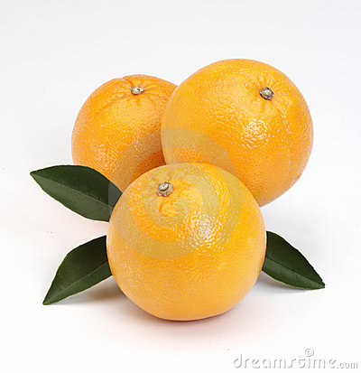 Free Oranges Stock Photos - 5894223