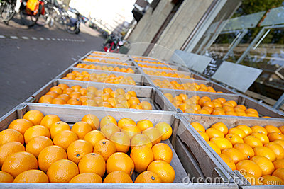Oranges in Amsterdam