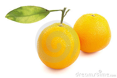 Oranges with leaf 1