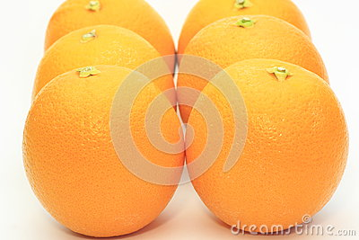 Oranges in a white background