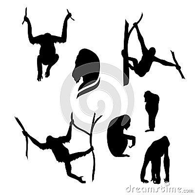 Free Orangutan Monkey Vector Silhouettes Stock Images - 56781744