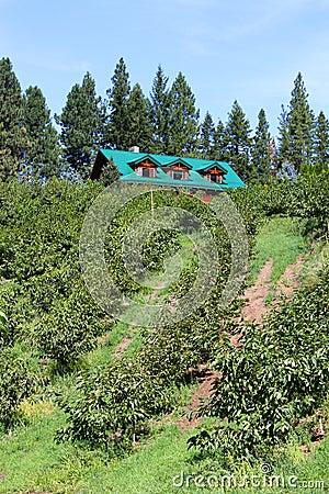 Orchard estate