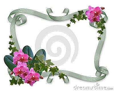 orchid es et cadre d invitation de mariage de lierre. Black Bedroom Furniture Sets. Home Design Ideas