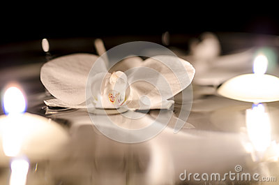 Orchid and candles floating on the water