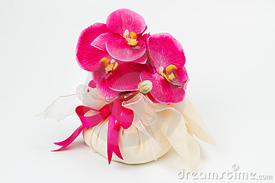 Orchid in a fabric bag