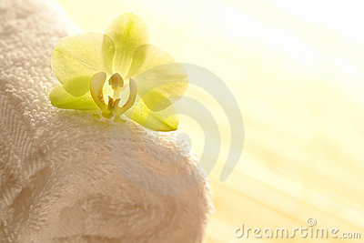 Orchid Flower on Spa Towel in High Key Mood