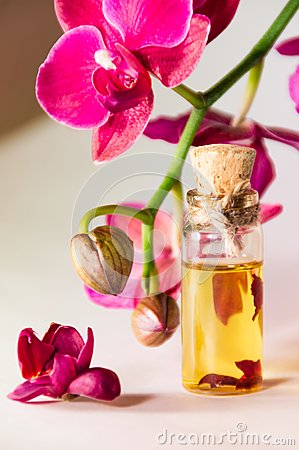 Orchid and oil
