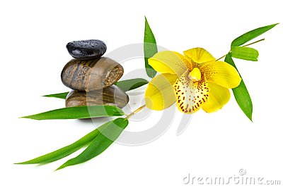 Orchid with Zen Stone isolated on white